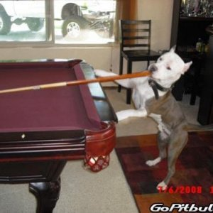 he made that corner pocket...lol