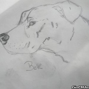 Belle drawn by another member of the site